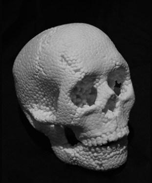 F.Viale_The_Skull__2009_5.jpg