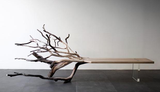 Fallen-Tree-Benjamin-Graindorge.jpg
