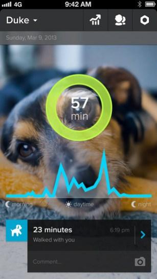 Whistle-dog-app-3.jpg