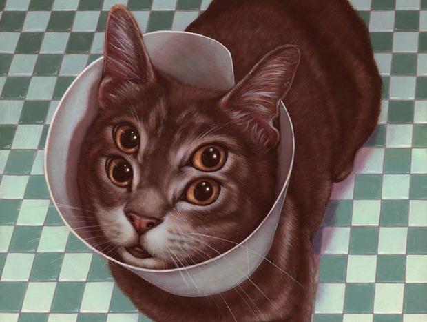 meow-brow-weldon-3.jpg