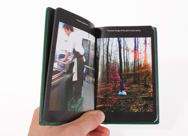 Rene-Redzepi-WIP-mini-book.jpg