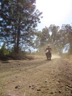 WC05-dust-rider.jpg