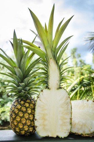Sugarloaf-Pineapple-2.jpg