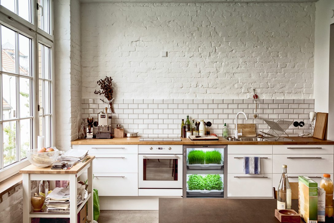 urban-cultivator-kitchen-greens.jpg