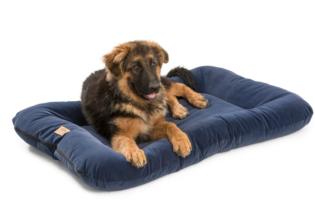 west paw s made in usa pet beds cool hunting