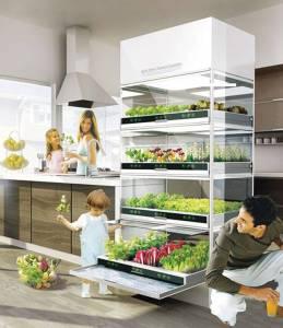 Homefarming: Hyundai Nano kitchen