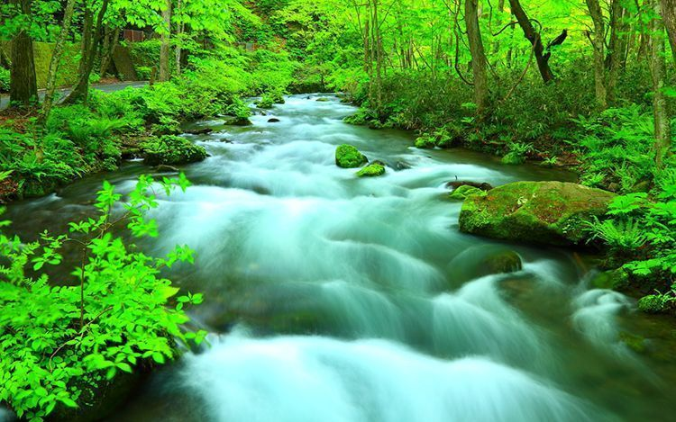 Oirase es el torrente montañoso que está cerca del lago Towada.