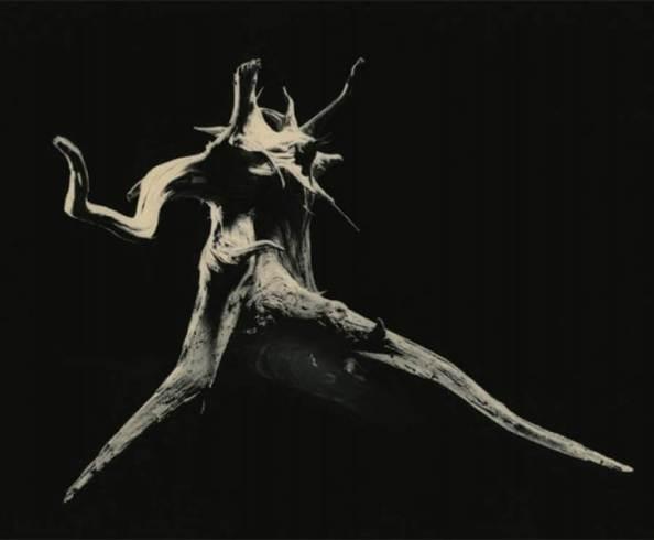 Colección Shizuka, obra de Masao Yamamoto