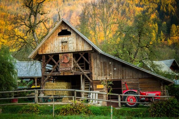 Farm in Slovenia