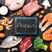 增肌減脂吃最重要! 絕對不可少的「蛋白質」