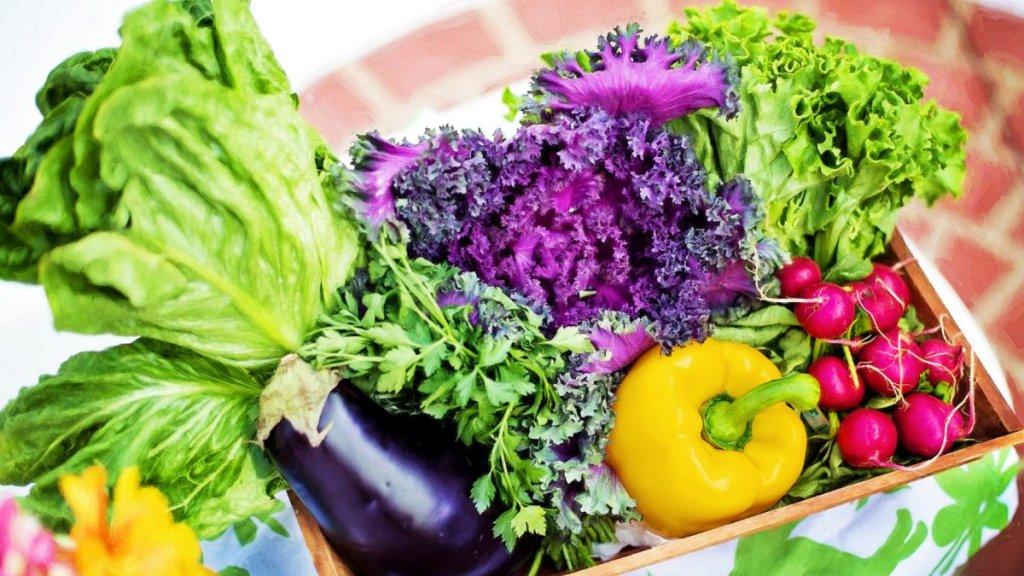 減肥日常飲食: 必吃6種富含抗氧化劑的食物