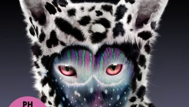 Photo of Galantis – Pharmacy (iTunes Plus) (2015)