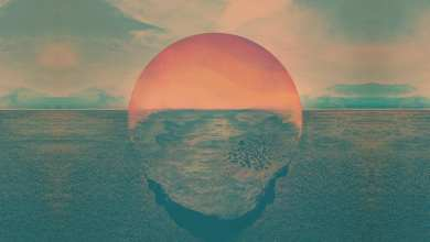 Photo of Tycho – Dive  (2011) [iTunes Plus AAC M4A]