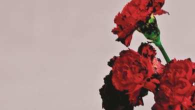 Photo of John Legend – Love in the Future (Deluxe Version) (iTunes Plus) (2013)