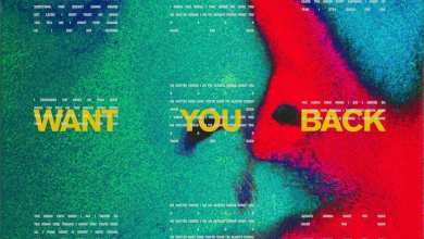 Photo of 5 Seconds of Summer – Want You Back – Single (iTunes Plus) (2018)