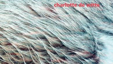 Photo of Charlotte de Witte – Vision EP (iTunes Plus) (2020)