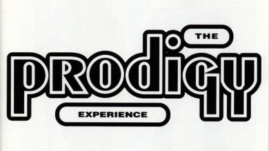 Photo of The Prodigy – Experience (iTunes Plus) (1992)