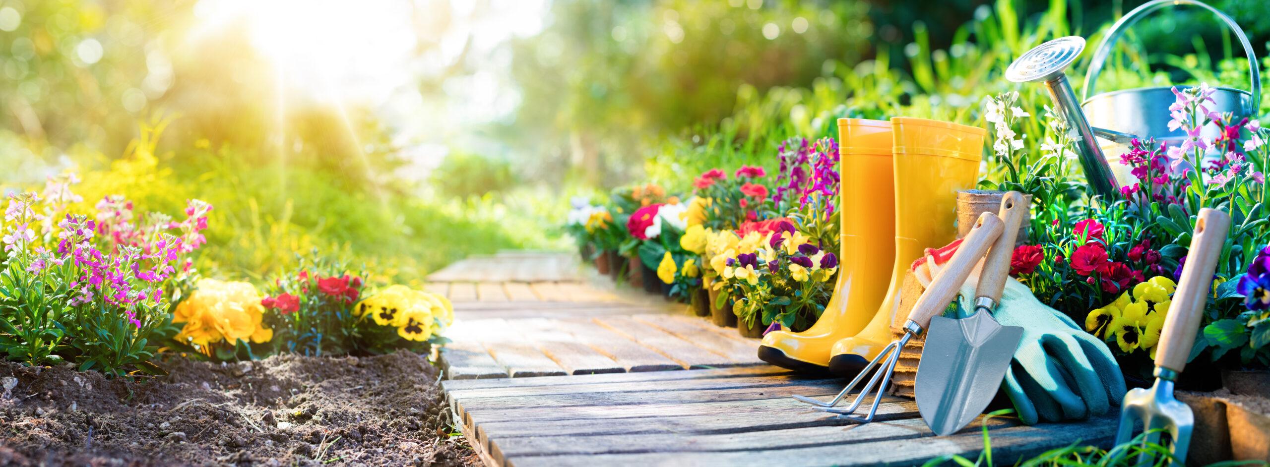 jardinerie toulon