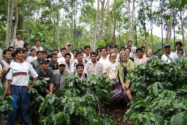 history of fair trade | Coop coffees