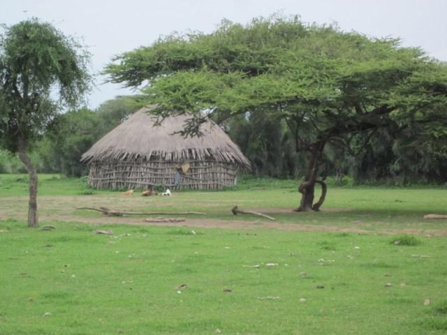 Els poblats i les seves vivendes / Los poblados y sus viviendas etiopia