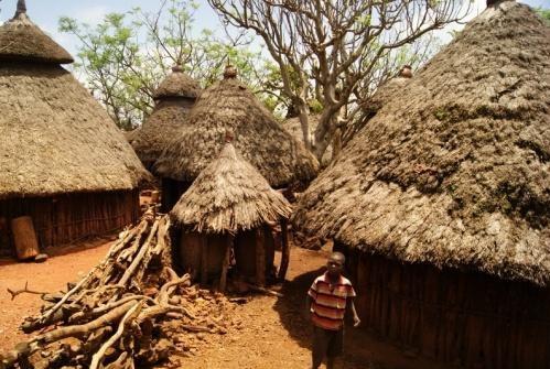 Viure sense diners / Vivir sin dinero africa