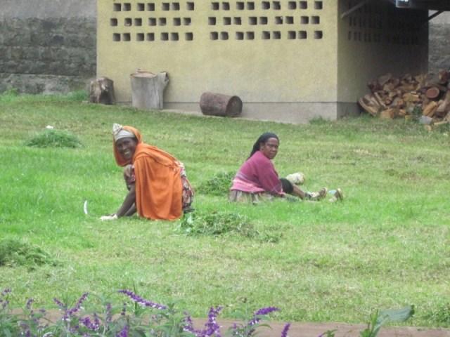 Les jardineres / Las jardineras etiopia gambo