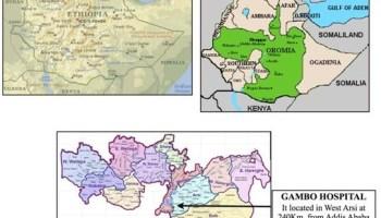 Context sanitari / Contexto sanitario africa