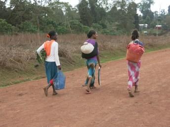 No quiero ayudar africa alegria gambo alegria sin fronteras