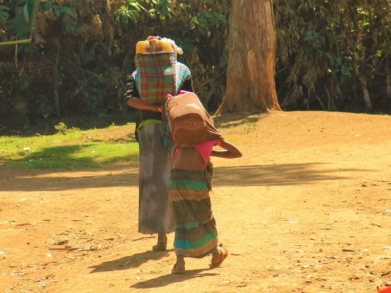 Las niñas del bidón amarillo que soñaban con un lápiz alegria gambo alegria sin fronteras