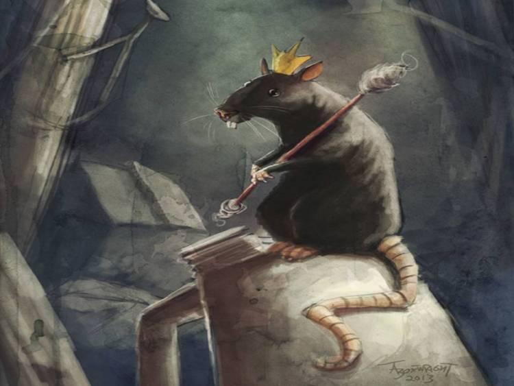 rey ratas