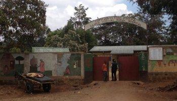Condenada por la belleza africa alegria gambo alegria sin fronteras