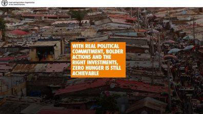 ZERO HUNGER: An immense challenge but still achievable africa gambo