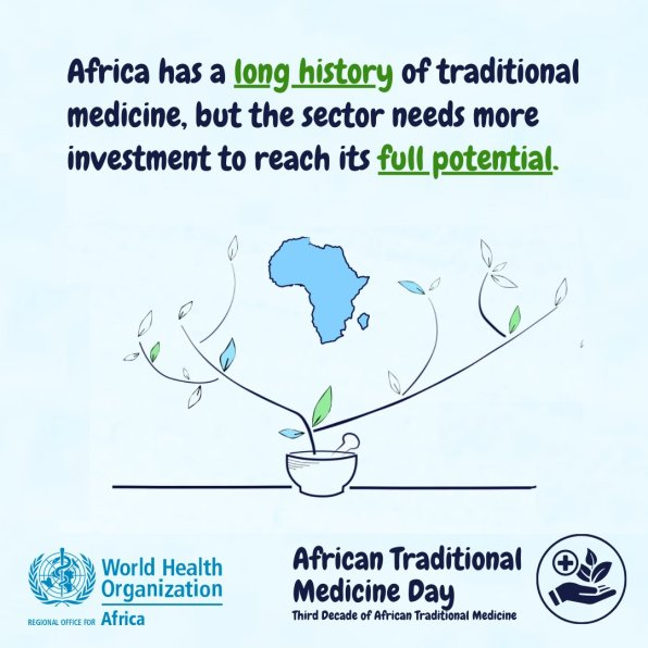 African #TraditionalMedicineDay africa