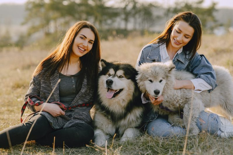 pet parents and their dogs taking photo for international dog day