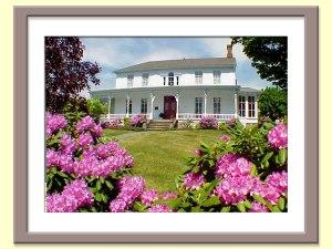 The tripp House