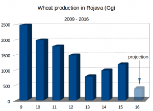 wheat_production