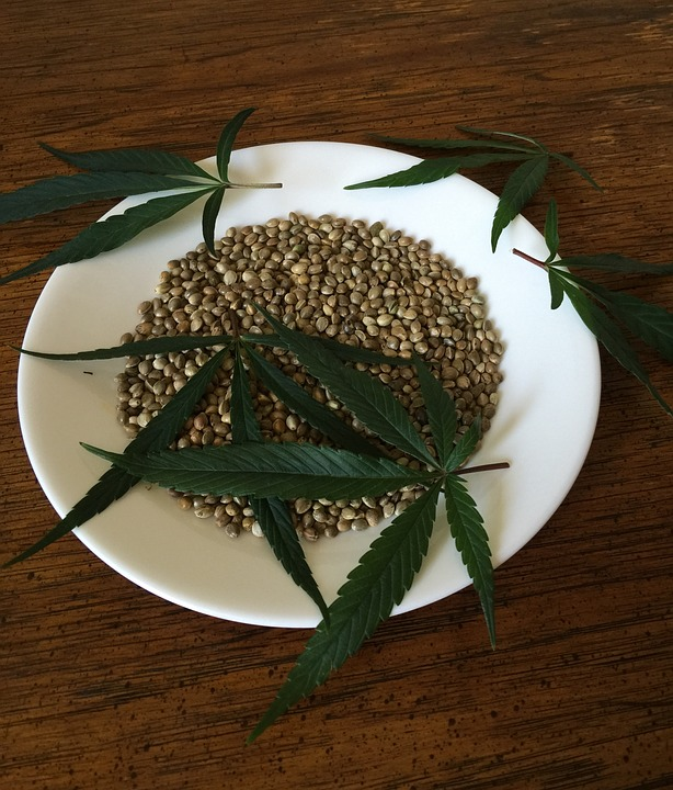 cannabis-seeds-1418321_960_720
