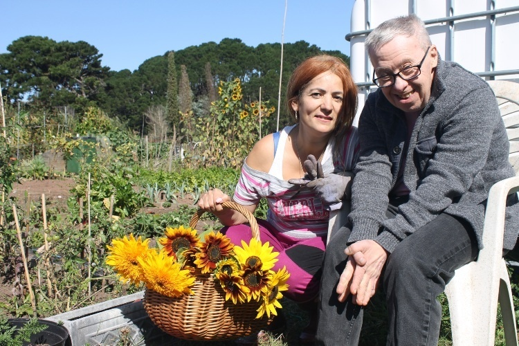 a man is sitting on a chair on an allotment next to him is a woman with a basket of cut yellow flowers of sunflowers