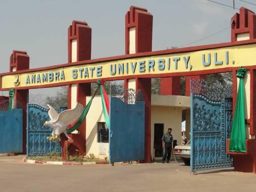 https://mynaijainfo.com/anambra-state-university-shuts-students-murder-phot