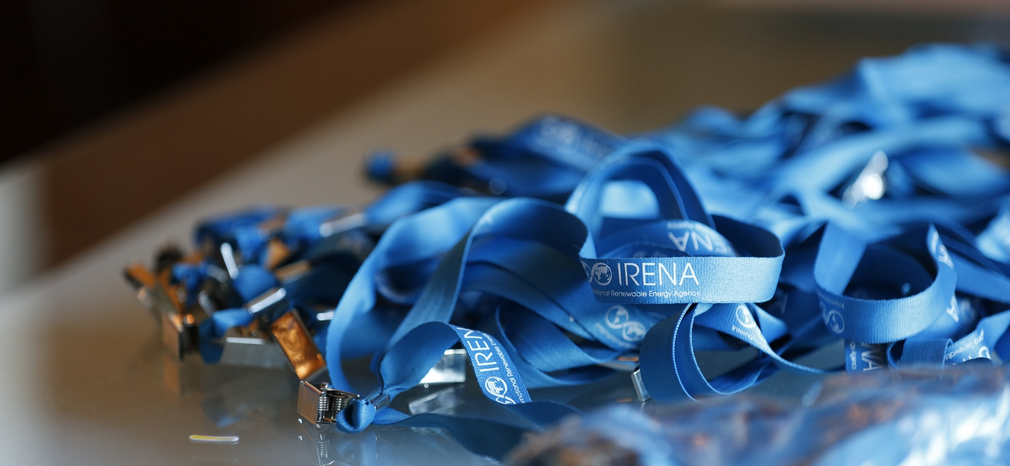 Energy Community Gathers at IRENA's  7th Assembly