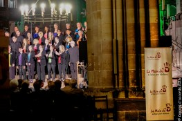 2016-06-04 Cathedrale Strasbourg_177