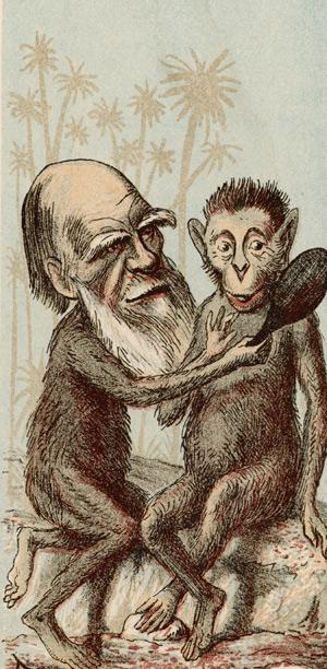caricatura-darwin-2
