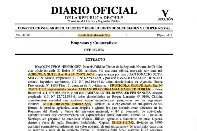 Extracto en Diario Oficial