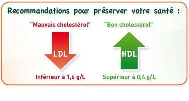 bon et mauvais cholesterol