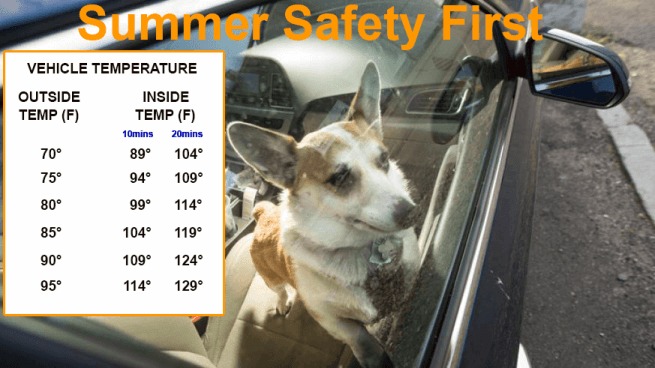 Copper Eagle Patrol : Don't Lock you Child or Pet in the car.