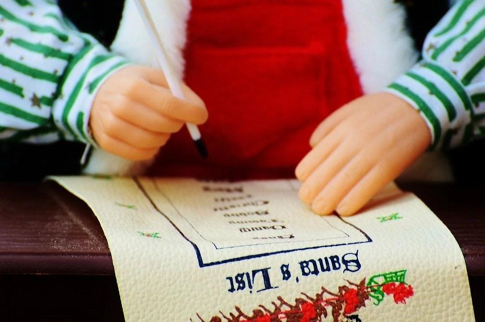 enchanted Christmas visits, christmas information form
