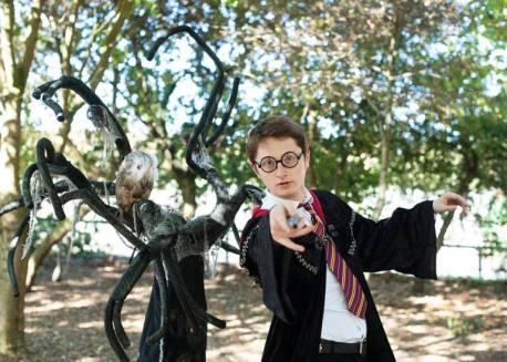 wizard harry, copycat wizard character