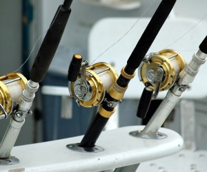 Important Tips Before Buying Fishing Reel