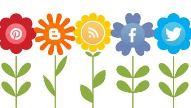Enhance the Social Media Presence