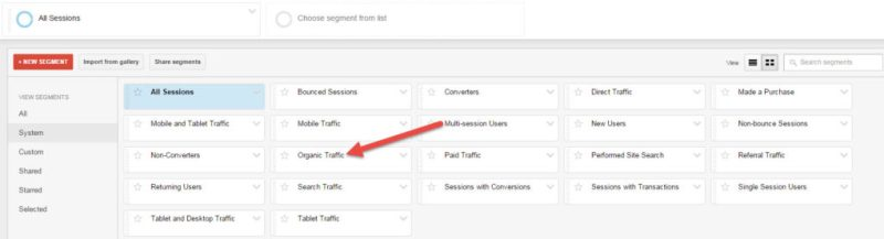 Organic Segment in Google Analytics